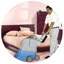 professional carpet cleaning service los angeles